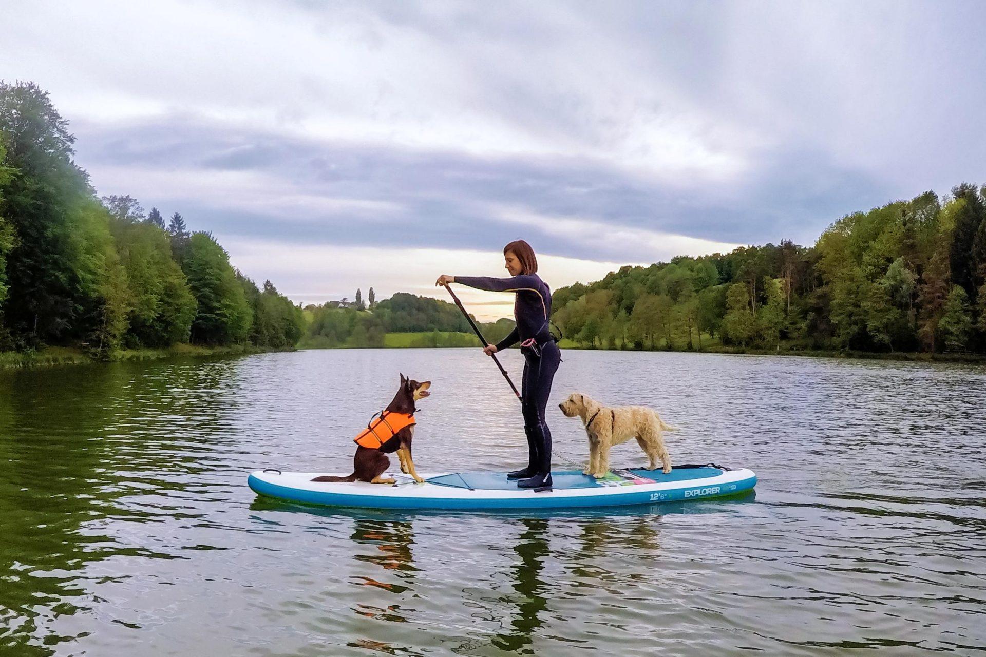 Supanje s psom - izberi primerno lokacijo
