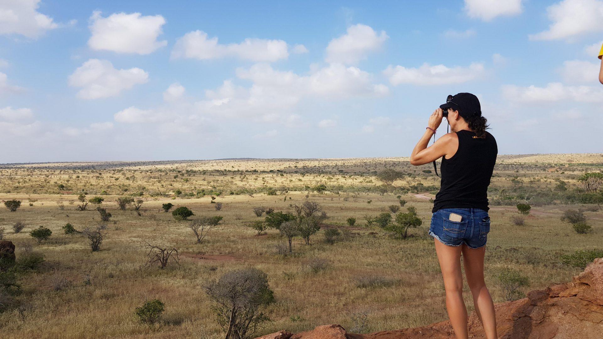 Afriški Savari v nacionalnem parku