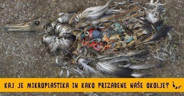 Kaj je mikroplastika in kako prizadene nase okolje