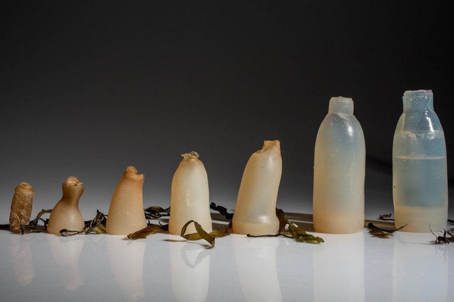 Islandec Ari Jonsson je oblikoval biorazgradljivo posodo za vodo, narejeno iz alg agar.