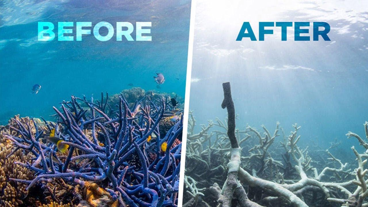 Težave oceanov