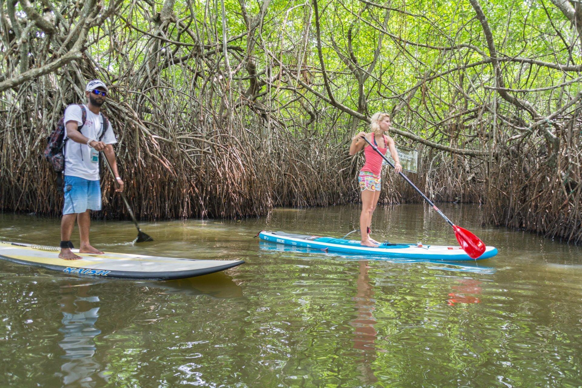 Supanje med mangrovi