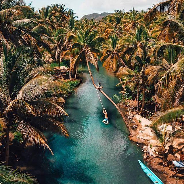 S supi po promenadi palminovih dreves