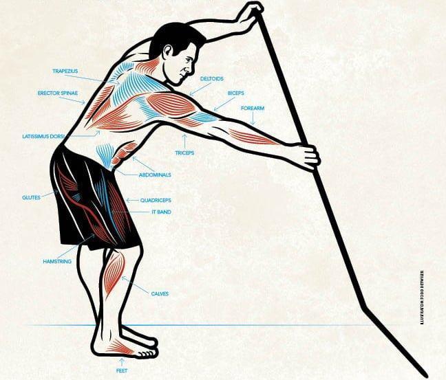 katere-mišice-uporabljamo-pri-supanju