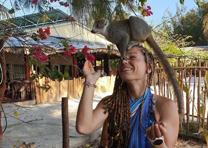 Udomačeni lemur