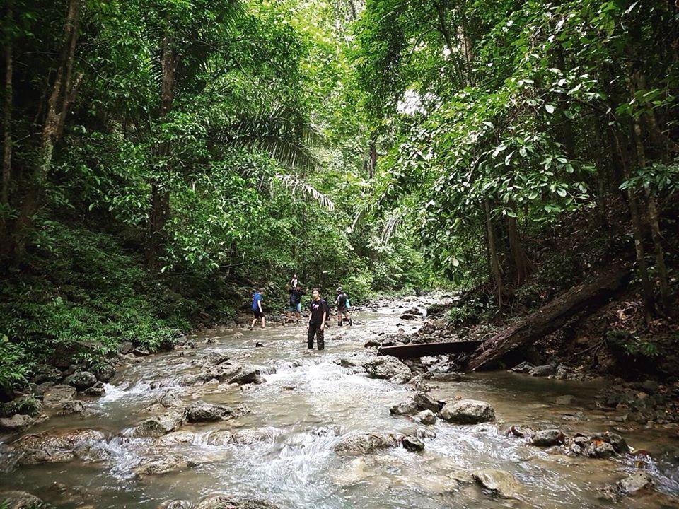 Treking skozi džunglo