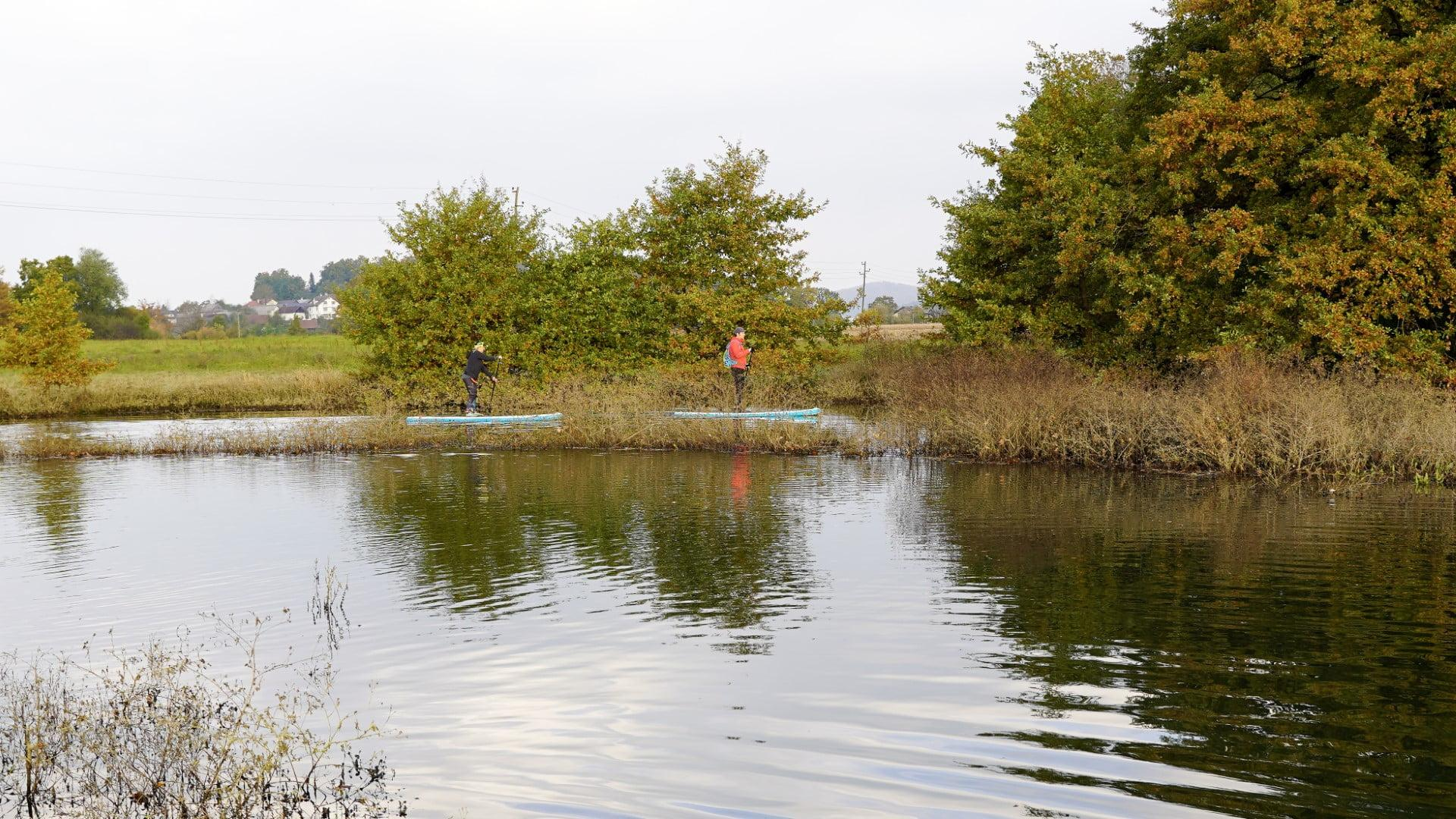 Supanje v krajinskem parku Radensko polje